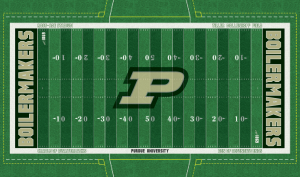Homage to Tiller, Mollenkopf, The Cradle and The Den could all be employed on a new field turf design.  designed by: R. Dowd 6/19/14
