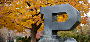 Purdue in the fall