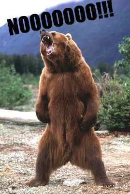 bear_no