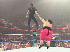 undertaker yokozuna wrestling classics