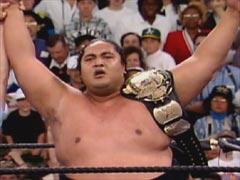 yokozuna wins title