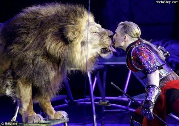 lion_tamer