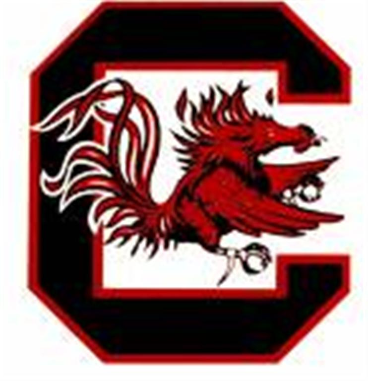 south20carolina20logo