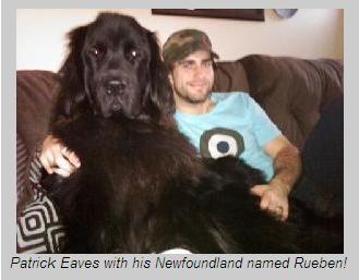 eavesanddog