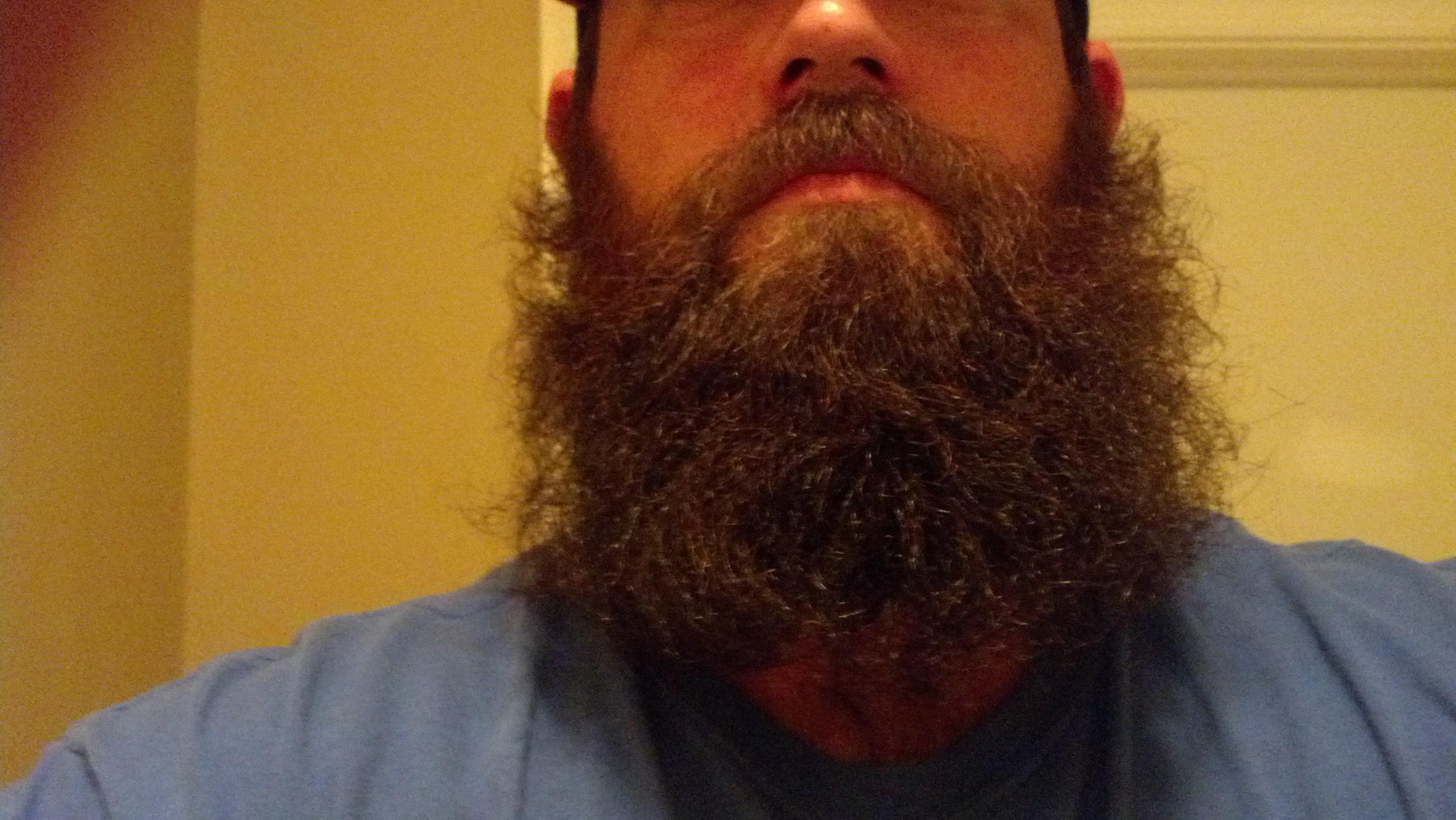 beard2mattkelly