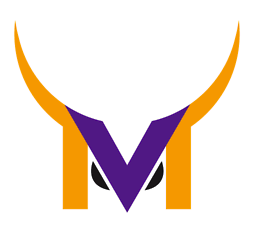 New Vikings Logo