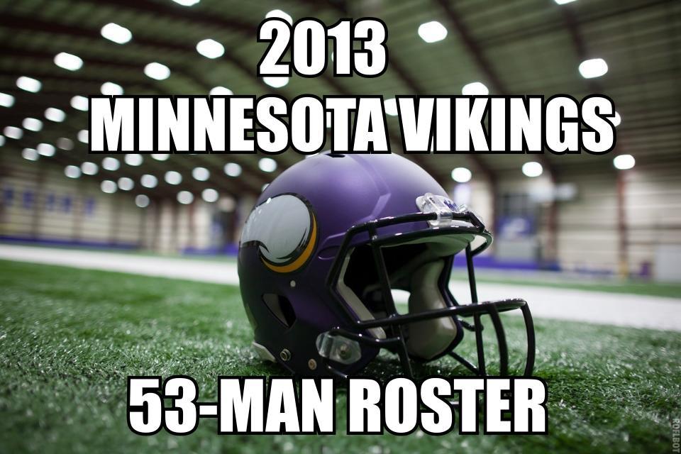 2013 minnesota vikings roster
