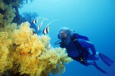 cousteau-1-713281